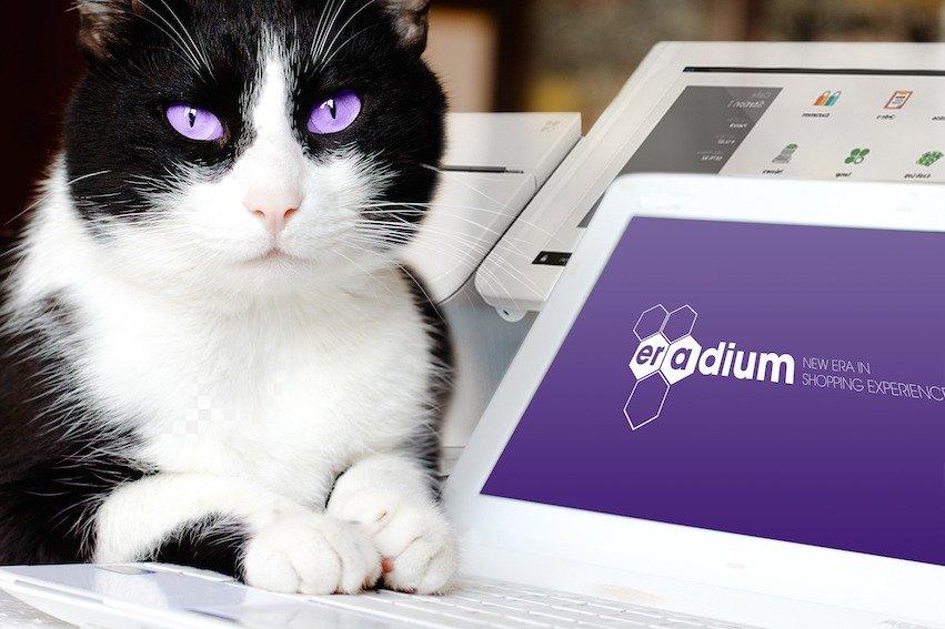 cat eradium new era omnichannel commerce