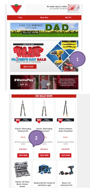 Eradium ecommerce email campaign blog 11 fathers day Canadian tire-1