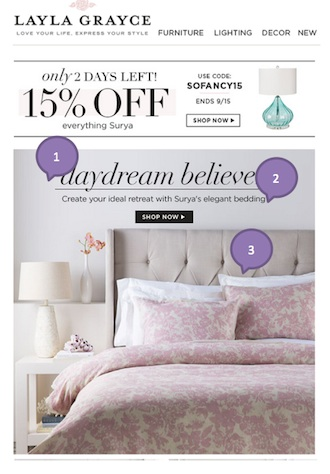 Eradium discount coupons in ecommerce email marketing Layla Grayce 1