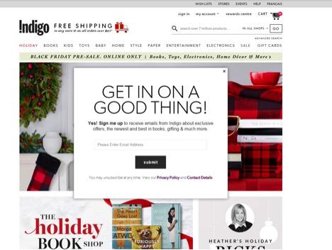 Eradium ecommerce review indigo home-page