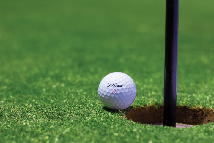 persona sport lover golf