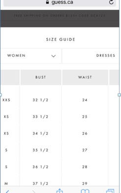 Eradium fashion and ecommerce size guide guess