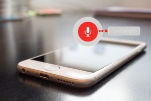 voice-search-feature